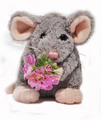Soft Toy Mouse poster