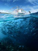 Постер, плакат: Коллаж с лодки подводные и традиционных школа Джек рыбы на поверхности в Солнечный день