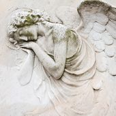stock photo of urn funeral  - sleeping angel  - JPG