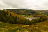 Autumn Over To Derwent Valley