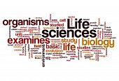 Life Sciences Biology Concept Background