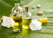 stock photo of cosmetic products  - Health spa with massage oil and white flower  - JPG