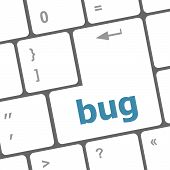 pic of stick-bugs  - Computer keyboard with bug key - JPG