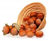 picture of filbert  - Ripe filberts drop out of a wicker hat over white background - JPG