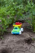 small colored toy car with harvest red berries