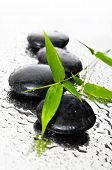 background of a spa black stones, and a sprig of green bamboo