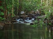 stock photo of darwin  - Waterfall in Florence Creek - JPG