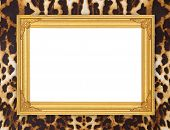pic of leopard  - blank golden frame with leopard texture background - JPG