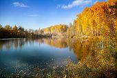 pic of siberia  - Autumn in Siberia - JPG