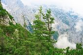 stock photo of bavarian alps  - Bavarian landscape at Alps with low clouds - JPG