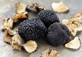 pic of edible mushrooms  - expensive rare black truffle mushroom  - JPG