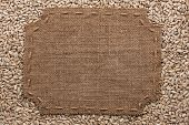 foto of stitches  - Figured frame with burlap and stitches with place for your text lying on sunflower seeds as a background - JPG