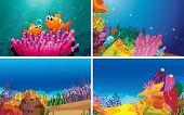 picture of undersea  - Illustration of four scenes of underwater - JPG