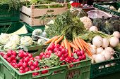 pic of farmers market vegetables  - Fresh vegetables in crates at a farmers market - JPG