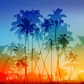 stock photo of rasta  - Vector palms silhouettes vector tropical sunset background - JPG