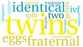 foto of zygote  - Twins word cloud on a white background - JPG