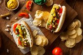 stock photo of wiener dog  - Homemade Chicago Style Hot Dog with Mustard Relish Tomato and Onion - JPG