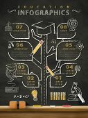 picture of grown up  - creative education infographics blackboard with a tree grown up and divided into different road - JPG