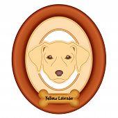 image of bird-dog  - Yellow Labrador Retriever dog portrait in cherry wood mat frame - JPG