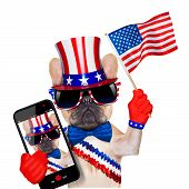 pic of selfie  - french bulldog waving a flag of usa on independence day on 4th of july isolated on white background while taking a selfie - JPG