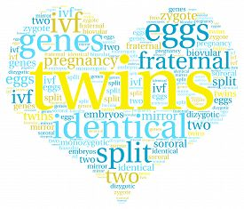 pic of zygote  - Twins heart shaped word cloud on a white background - JPG