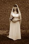 Sepia Gazing Bride poster