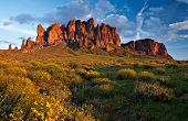 stock photo of wildflowers  - An expansive view of the Superstition Mountains Arizona USA at sunset with spring wildflowers blooming in the foreground - JPG