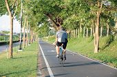 Bicycle Lane In The Park, Cycling, Park Cycle Bike poster