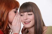 stock photo of babbler  - Two girls gossiping - JPG