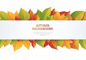Autumn Illustration With Foliage Of Trees. Flyer For Autumn Discounts And Sales. Autumn Template For poster