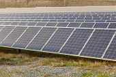 Solar Energy Batteries, Solar Power Station. Set Of Panels Of Solar Batteries In The Field poster
