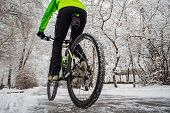 Cyclist Rides In A Beautiful Winter Park With Snowy Trees. Active Winter Activities. Back View poster