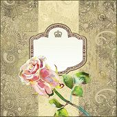 Ornate Pattern With Pink Watercolor Rose