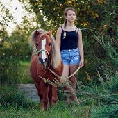 Little Pony Horse With Teenage Girl Outdoors At Countryside poster