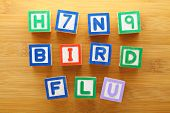 pic of avian flu  - H7N9 bird flu toy block - JPG