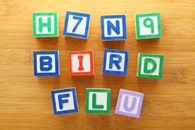 picture of avian flu  - H7N9 bird flu toy block - JPG
