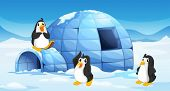 pic of igloo  - Illustration of the three penguins near an igloo - JPG