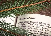 picture of bible verses  - Bible open to Christmass passage with evergreen sprigs - JPG