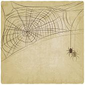 Vintage background with spider web