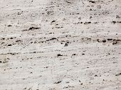 stock photo of pores  - A background with creamcolored travertine with pores - JPG