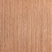 Walnut Wood Veneer, Tree Background