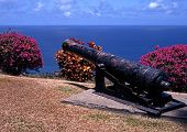 foto of west indies  - Old gun at Fort St - JPG