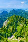foto of pieniny  - Spring landscape in The Pieniny Mountains Poland - JPG