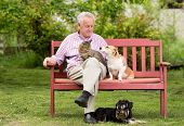 stock photo of cuddle  - Old man resting on bench and cuddling dog and cat - JPG