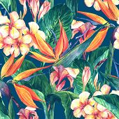 foto of butterfly  - Tropical seamless pattern with exotic flowers and butterflies - JPG