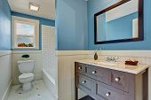 pic of tub  - Bathroom interior with blue wall and white plank panel trim - JPG