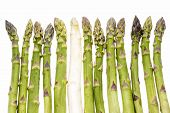 foto of spears  - One single white asparagus spear amidst a line - JPG