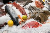 picture of saltwater fish  - A lot of fresh saltwater fish and seafood on market stall - JPG