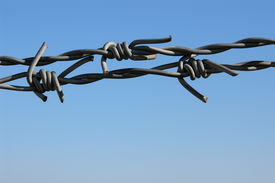 picture of barbed wire fence  - barbed wire against sky - JPG