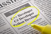 image of python  - C Developer - JPG